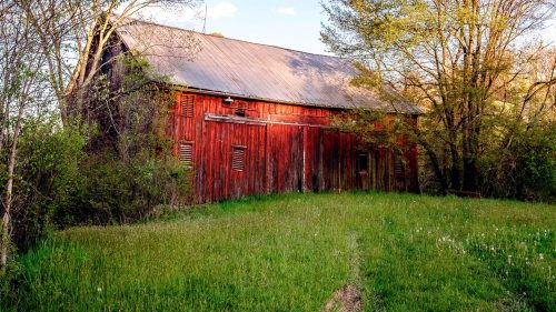 Forgotten Barn Jigsaw Puzzle