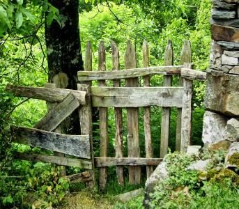 Forgotten Gate Jigsaw Puzzle