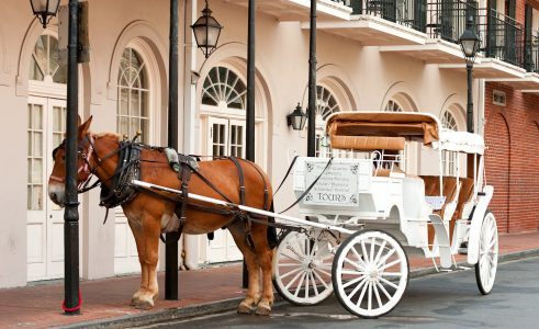 French Quarter Carriage Jigsaw Puzzle