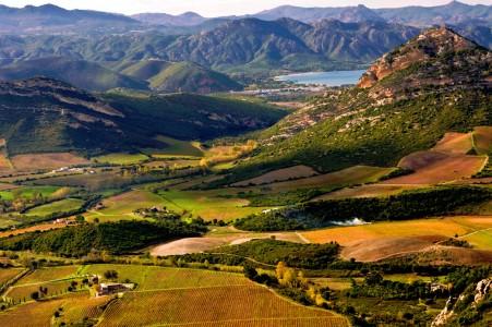 French Vineyards Jigsaw Puzzle