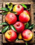 Fresh Apples Jigsaw Puzzle