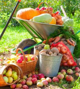 Fresh Harvest Jigsaw Puzzle