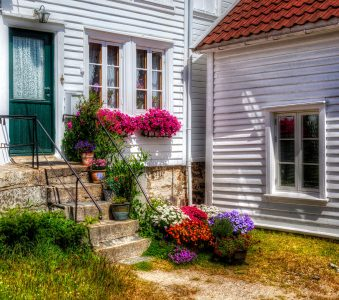 Front Steps Flowers Jigsaw Puzzle
