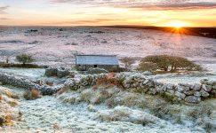 Frosty Vale