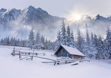 Frozen Cabin Jigsaw Puzzle