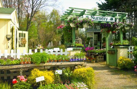 Garden Center Jigsaw Puzzle