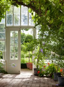 Garden Greenhouse Jigsaw Puzzle