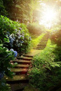 Garden Path Jigsaw Puzzle