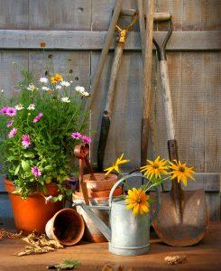 Garden pots jigsaw puzzle for Gardening tools crossword