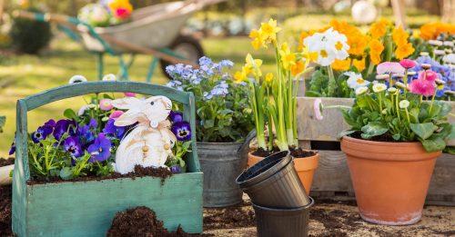Garden Rabbit Jigsaw Puzzle