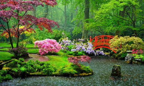 Garden Rain Jigsaw Puzzle