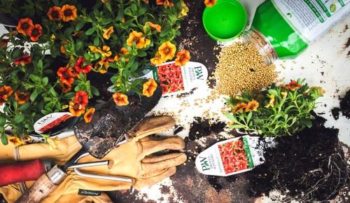 Garden Season Jigsaw Puzzle