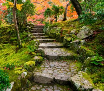 Garden Stairs Jigsaw Puzzle