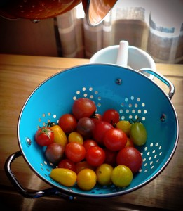 Garden Tomatoes Jigsaw Puzzle