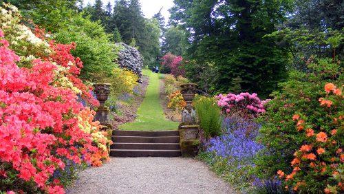 Garden Trail Jigsaw Puzzle