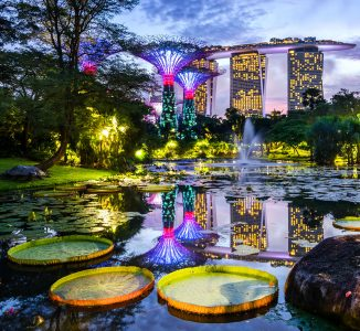 Gardens by the Bay Jigsaw Puzzle