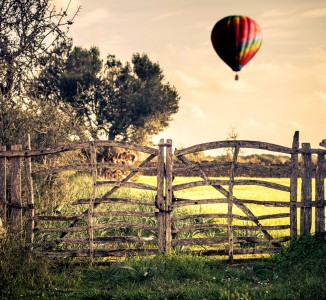 Gate and Balloon Jigsaw Puzzle
