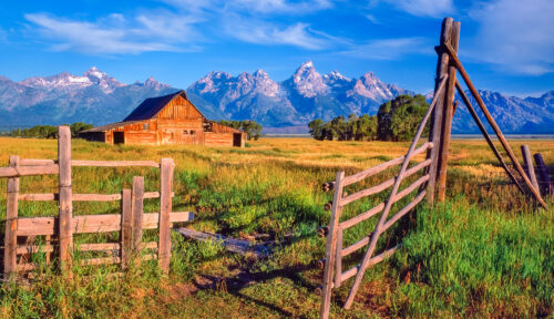 Gate and Barn Jigsaw Puzzle