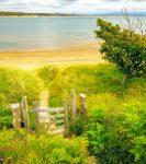 Gated Beach Trail