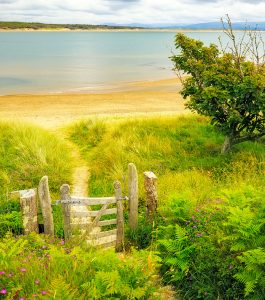 Gated Beach Trail Jigsaw Puzzle