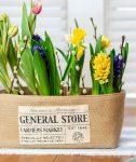 General Store Flowers