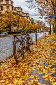 Golden Sidewalk Jigsaw Puzzle