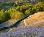 Grasmere Trail