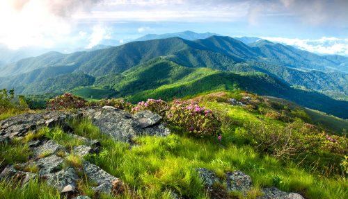 Grassy Ridge Jigsaw Puzzle