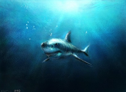 Great White Shark Jigsaw Puzzle
