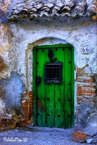 Green Door Jigsaw Puzzle