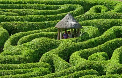 Green Maze Jigsaw Puzzle