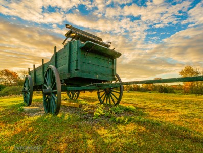Green Wagon Jigsaw Puzzle