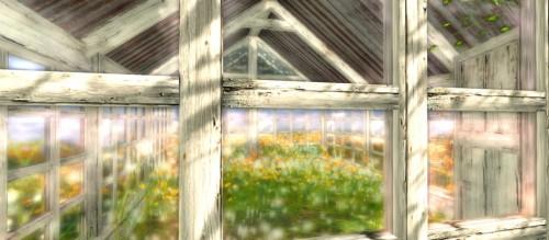Greenhouse Windows Jigsaw Puzzle