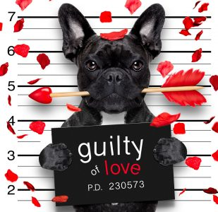 Guilty of Love Jigsaw Puzzle