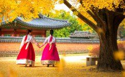 Gyeongbokgung Garden
