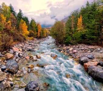 Gyronde River Jigsaw Puzzle