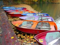 Hamori Lake Boats