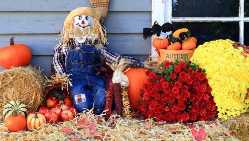 Happy Scarecrow Jigsaw Puzzle