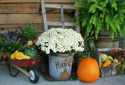 Harvest Decorations Jigsaw Puzzle