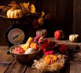 Harvest Scales