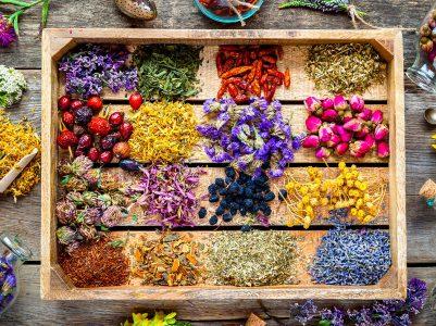 Healing Herbs Jigsaw Puzzle