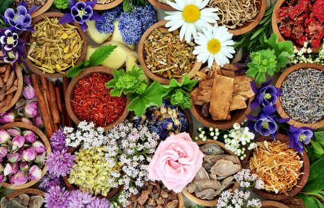 Herbs and Flowers Jigsaw Puzzle