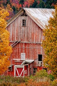 Hidden Barn Jigsaw Puzzle