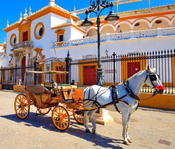 Horse and Carriage Jigsaw Puzzle