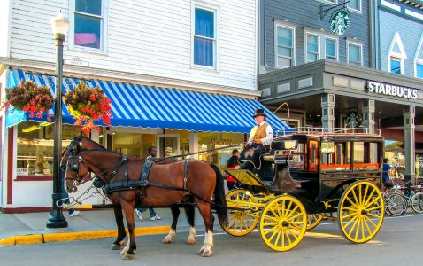 Horse-Drawn Carriage Jigsaw Puzzle