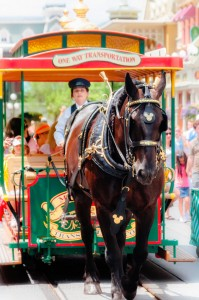 Horse Drawn Tram Jigsaw Puzzle