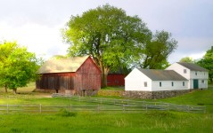 House and Barns