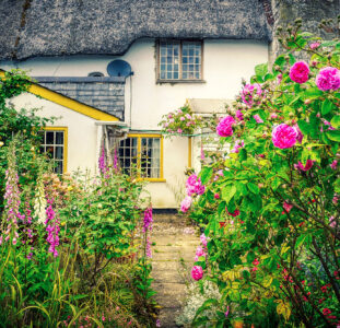 House and Garden Jigsaw Puzzle