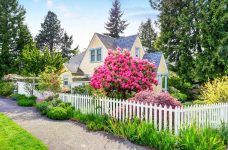 House and Rhododendron