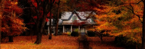 House in Fall Leaves Jigsaw Puzzle